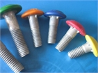 carriage bolt with nylon cap